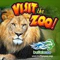 Buffalo Zoo