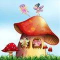 Fairy House Teaser