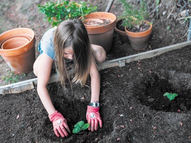 Sowing more than seeds