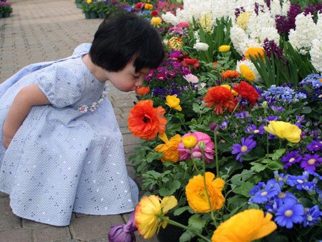 Little Girl at the Botanical Gardens