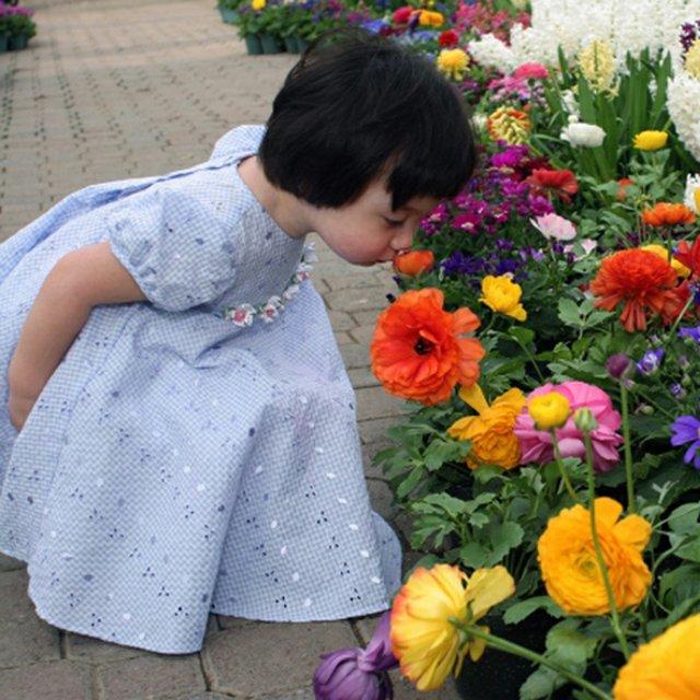Botanical Gardens Easter Teaser