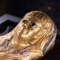 Golden Mummies of Egypt Teaser