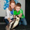 Aquarium Penguin Encounter