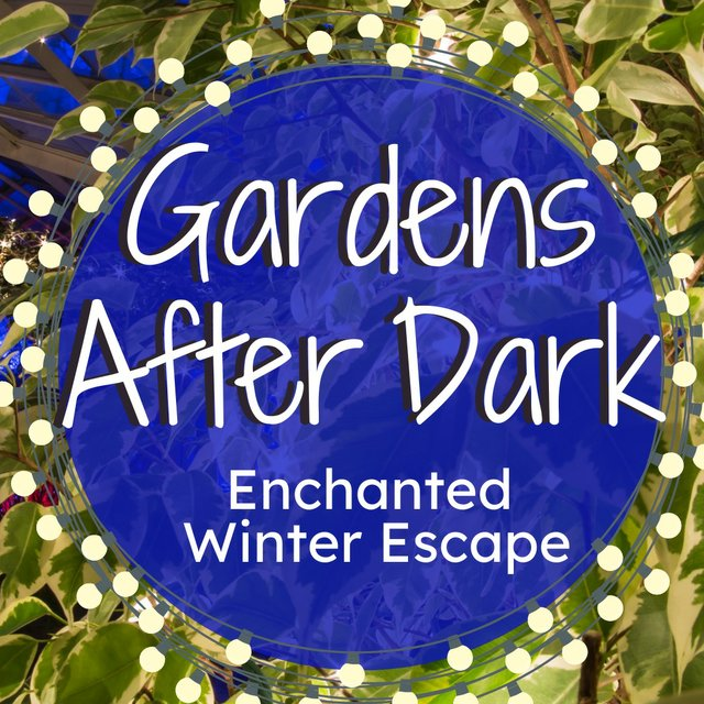 Gardens After Dark-Enchanted copy.jpg