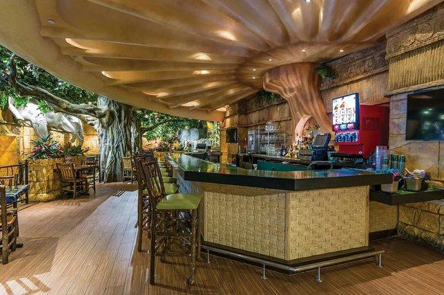 Rainforest Bar.jpg