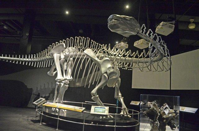 COSIdinasaur-(1).jpg
