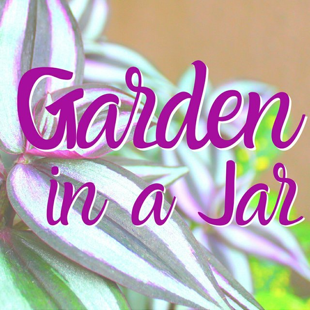 Garden in a Jar General copy.jpg