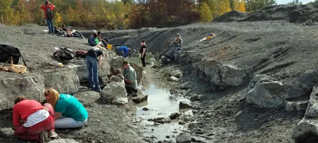 Fossil Hunting Penn Dixie.jpg