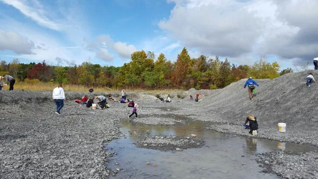Fossil Hunting at Penn Dixie.jpg