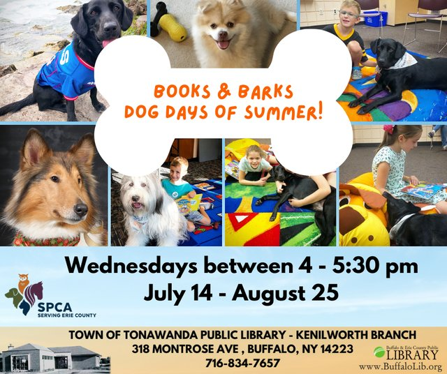 Copy of Copy of DOG DAYS OF SUMMER  BOOKS & BARKS.png