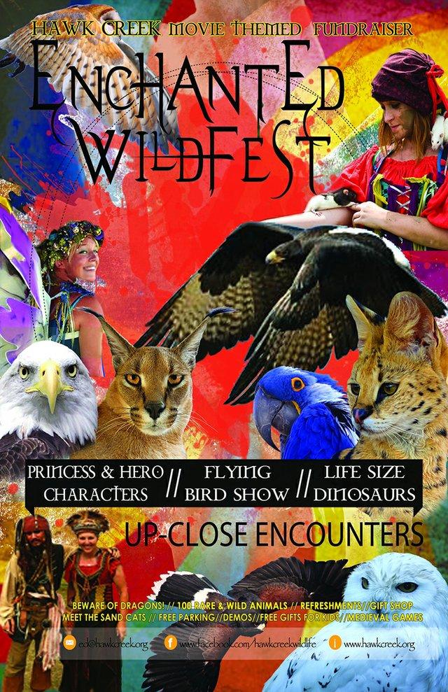 Enchanted Wild Fest.jpg