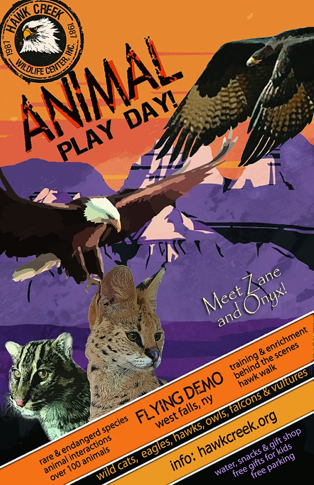 Animal Play Day.jpg