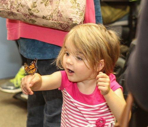 Monarch Fest 2017 little girl.jpg