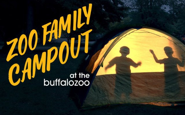 Zoo Family Campout.png