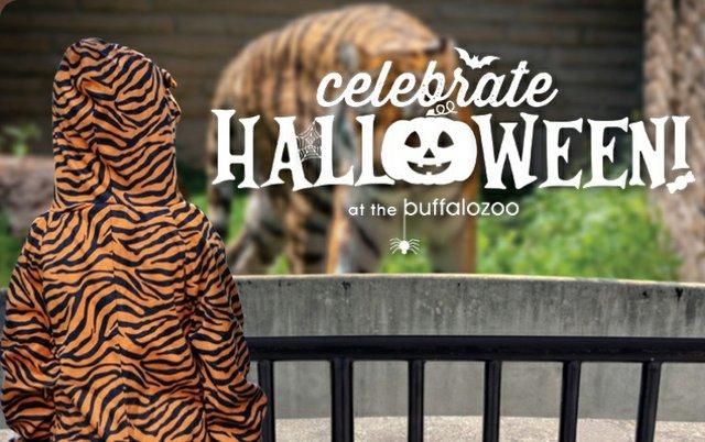 Halloween at the Zoo.jpg
