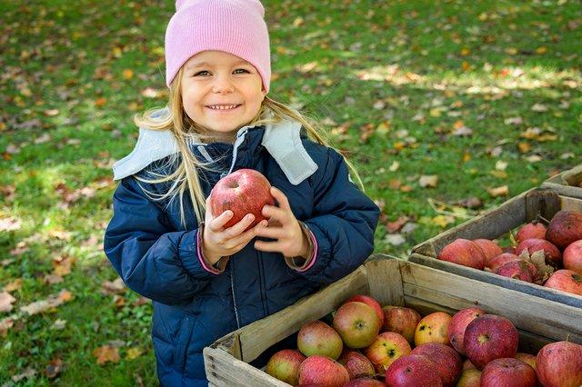 Girl with Apples GCV.jpg
