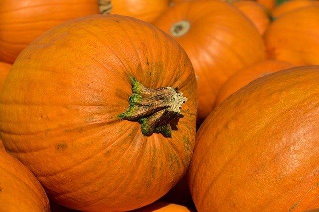 pumpkins-3636243_640.jpg