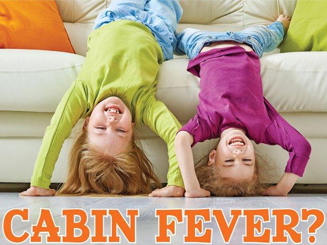 Cabin-Fever.jpg